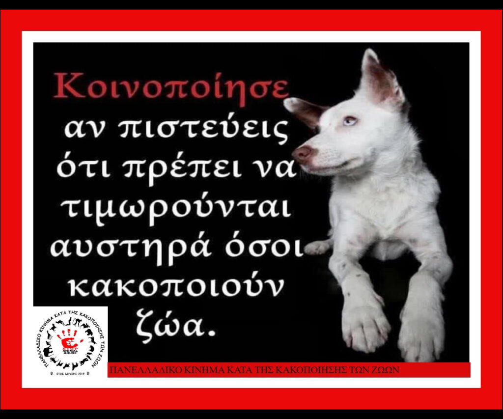 stop-animal-abuse-2