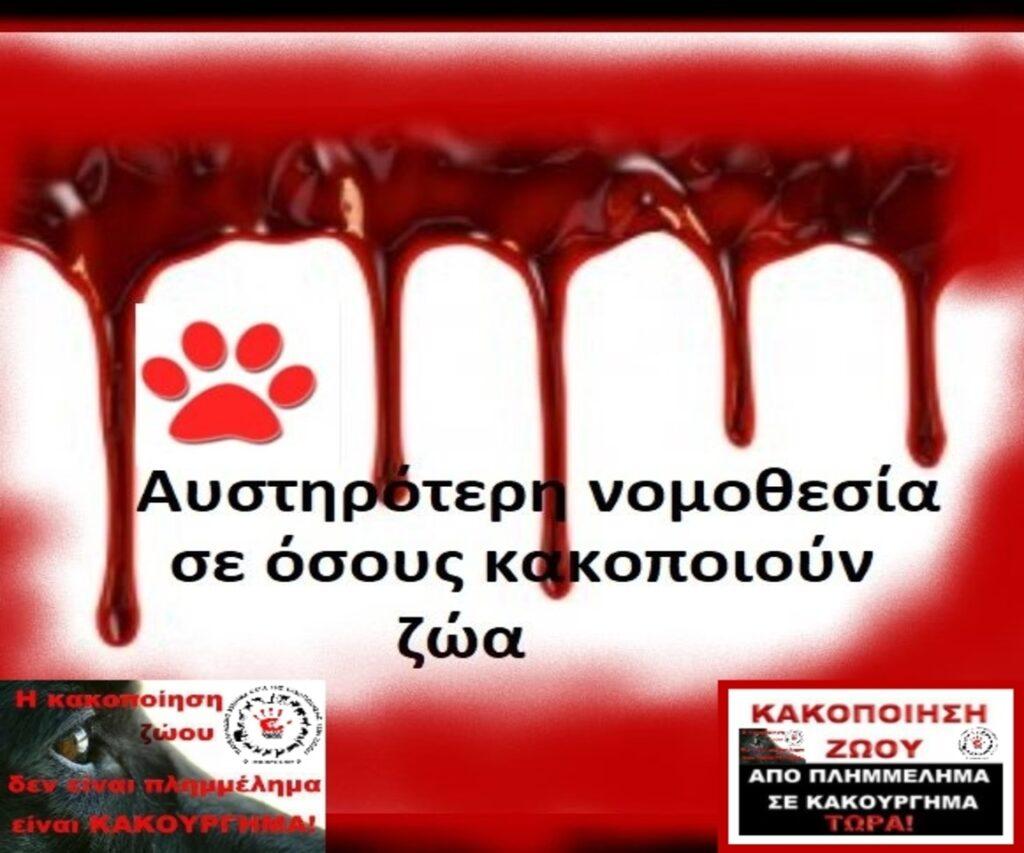 stop-animal-abuse-9